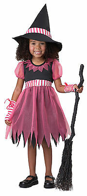 PINKY WITCH HALLOWEEN COSTUME TODDLER SIZE LARGE (4-6)