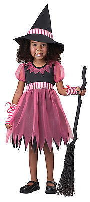 PINKY WITCH HALLOWEEN COSTUME TODDLER SIZE LARGE (4-6) - Pinky Halloween Costume