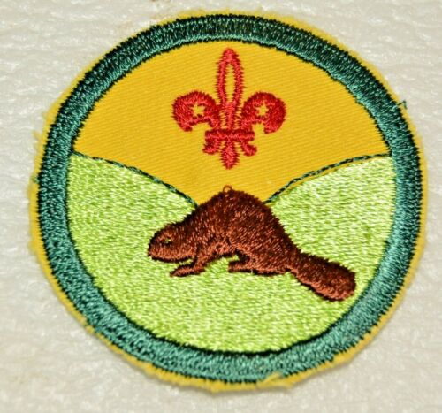 BEAVER VALLEY DISTRICT Circular Unnamed Boy Scout Uniform Badge Canadian (ABB3B)