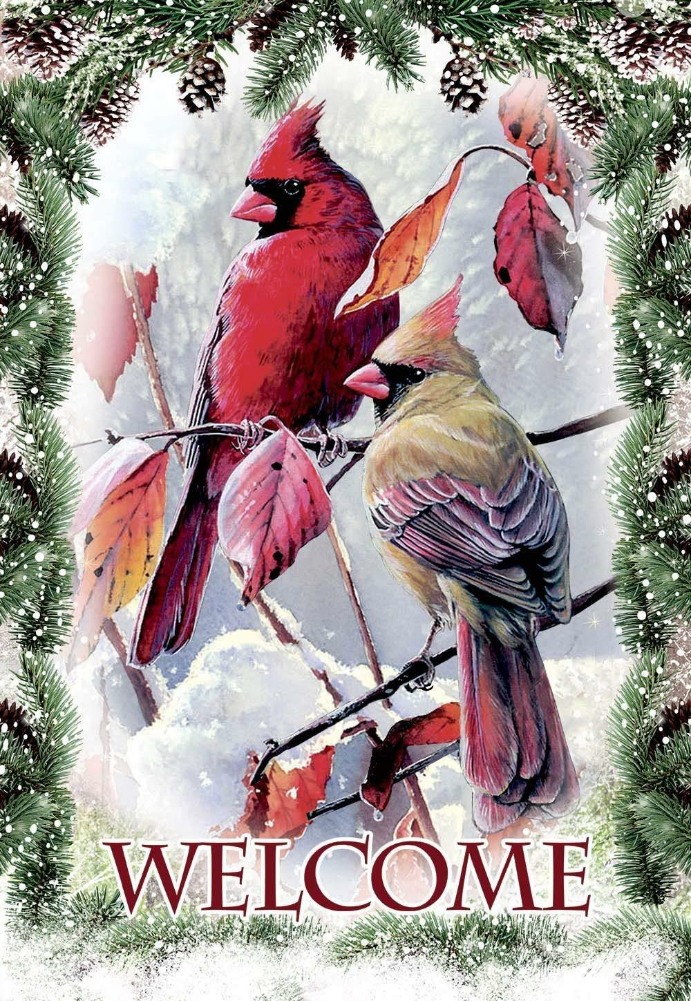 welcome cardinals snow pine double sided winter