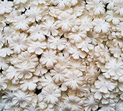 50++White+Petals+Carnation+Flowers+Mulberry+Paper+For+Craft+Scrapbooking+%26+D.I.Y