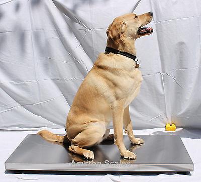 Super Heavy Duty Steel Vet Scale 1000 X 0.5 Lb 43x20 Inch Digital Dog Calf Large