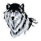 Temporary Tattoo Wolf