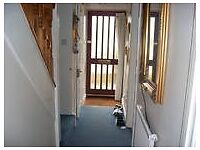 Squeaky clean room in friendly house in quiet, private road, Sutton