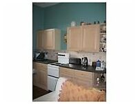 LARGE DOUBLE ROOM - DENNISTOUN