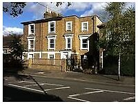 One Bed Flat with Patio just minutes from Twickenham Station