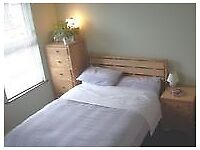 Double room for rent in house share close to city centre (Ormeau)