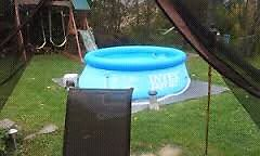 Piscine gonflable , inflate pool 8'