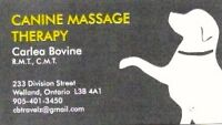 Massage for Dogs?!?!? Why yes!