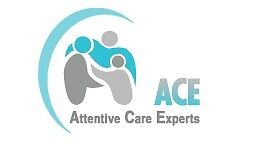 Care Assistant - MUST DRIVE