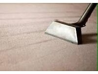 Professional carpet/upholstery cleaning