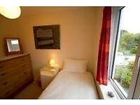 Single room for rent in shared house, 1 mile from Tiverton