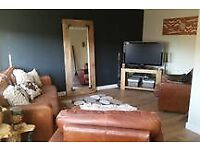 Tan brown leather hide 3 seater sofa with 2 armchairs - 3 piece suite, settee, couch, chairs