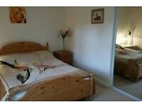 Spacious Double Bedroom in large warm house!