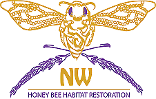 NW Honey Bee Habitat Restoration