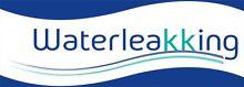 Water Leak King Sydney Region Preview