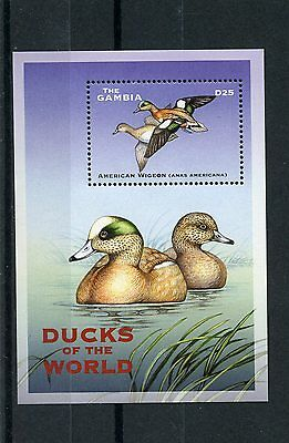 Gambia 2002 MNH Ducks of the World 1v S/S IV Birds American Wigeon Stamps