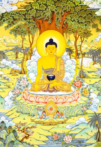 "26"" BLESSED TIBETAN BEAUTIFUL MINERAL THANGKA PAINTING POSTER: BUDDHA TURN WHEEL"