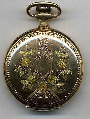 0 size Elgin pocket watch in 25 year multi-color gold-filled hunting case runs