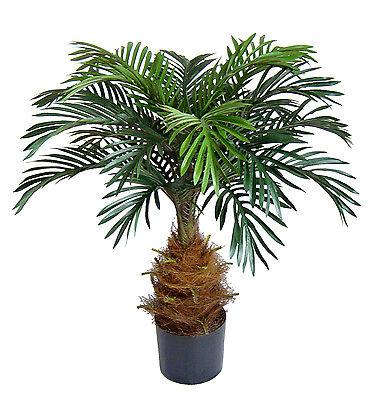 Cycaspalme 80cm DA - künstliche Palme Kunstpalmen Cycas Kunstpflanzen