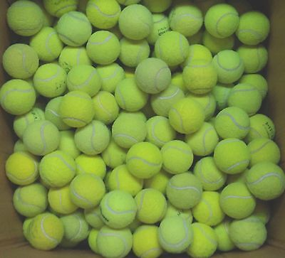 25 Used Tennis Balls For Dogs (15+10) Dog Ball / Toy. Machine Washed & Sanitised