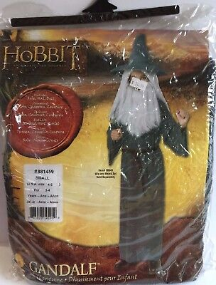 Gandalf The Grey Halloween Costume (Rubie's The Hobbit Gandalf the Grey Children's Halloween Costume Size Small)