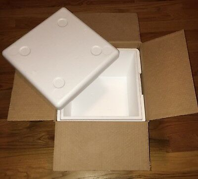 Thermosafe Styrofoam Insulated Shipping Cooler Box Large Square Mailer