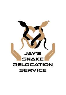 Snake / Reptile catcher Sunshine Coast area