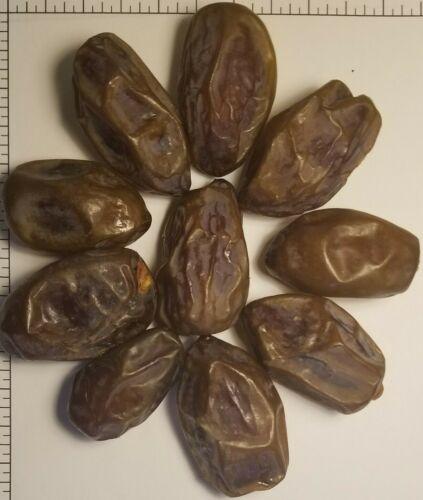 SALE! 11 lbs 2020 CHOICE Medjool Dates - Aceves Farms California