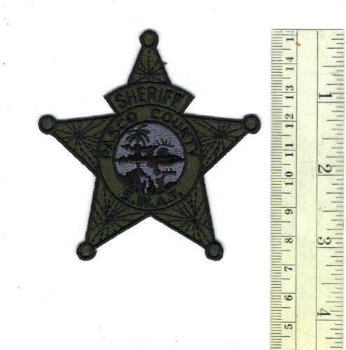 Pasco County FL Florida Sheriff SUBDUED SWAT hat/vest patch - NEW!