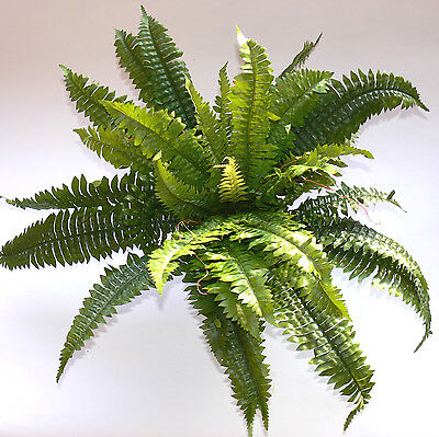 Sydeco Farn Nr. 2 Terrariendeko Terrarium Kunststoffpflanzen Dekoration  Deko