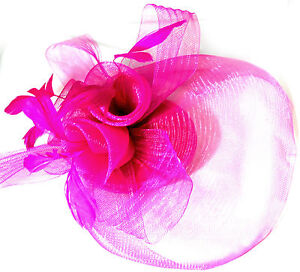 Fuschia Hot Pink Wedding Party Races Hair Accessories Veil Fascinator Clips
