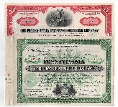 Set of 2 - Pennsylvania Salt Manufacturing Co. Stock Certificates