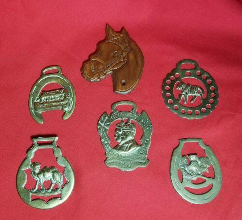 VINTAGE Lot of 5 Vintage Horse Harness Brass Medallion Bridle Ornaments + Extra