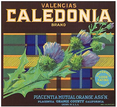 ORANGE COUNTY CRATE LABEL FLOWERS CALEDONIA PLACENTIA VINTAGE ORIGINAL 1944 - Orange Crate Label