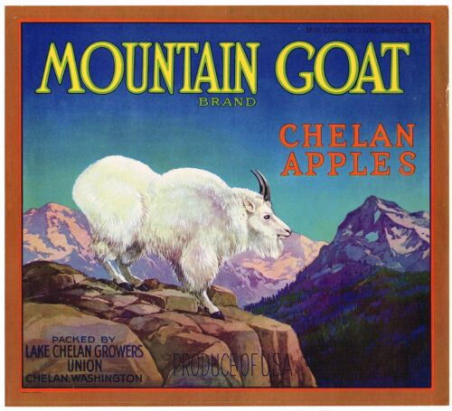 ORIGINAL APPLE CRATE BOX LABEL MOUNTAIN GOAT CHELAN WASHINGTON 1930S VERSION 2
