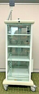 Stryker 240-099-011 Endoscopy Medical Video Cart Rolling Cabinet Wmonitor Arm