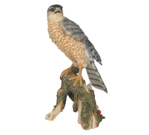 "Sparrow Hawk Bird - Collectible Figurine Miniature Statue 10.75""H New"