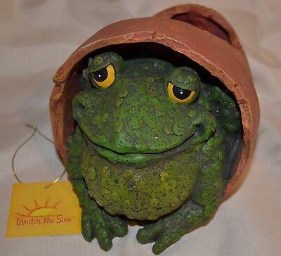 Frog Hiding in Broken Pot by Under the Sun Van Group