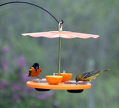Kettle Moraine Recycled Orange Oriole Fruit, Jelly, Mealworm Bird Feeder w/ Roof