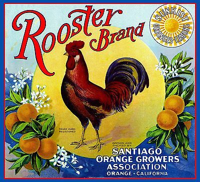 Orange County Rooster Chicken Orange Citrus Fruit Crate Label Vintage Print #1
