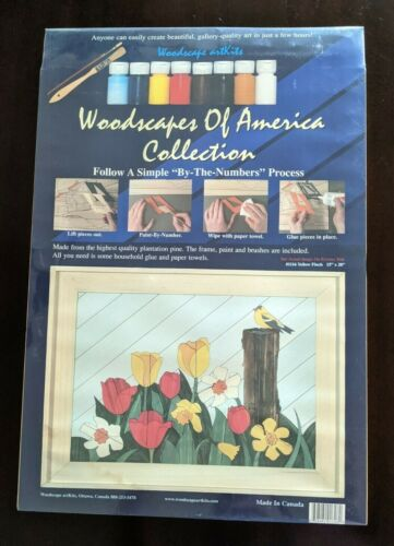 Woodscapes Of America #1116 Yellow Finch 15x20 Floral Painting Wood Art Kit