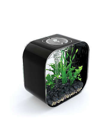 BiOrb Life 30 Aquarium - Black