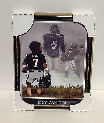 Atlanta Falcons Picture Frame - 8 x 10 Boy Wonder Michael Vic Picture and Frame   (D)
