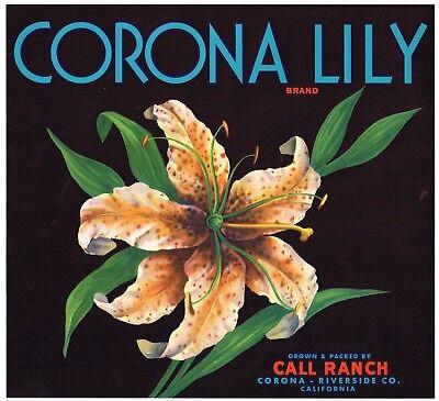 ORANGE CRATE LABEL RIVERSIDE CORONA TIGER LILY BOTANICAL ORIGINAL ADVERTISING