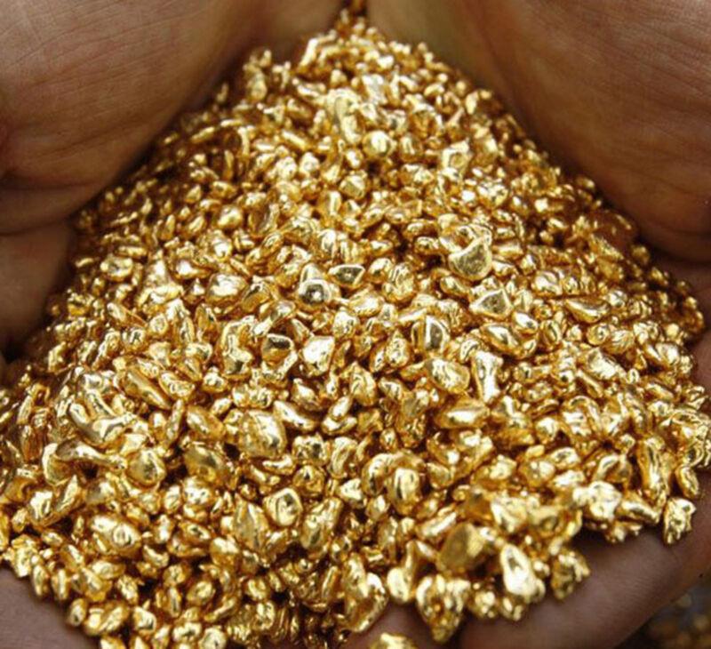 24K .9999+medical grade Pure Gold Shot, 5 Grains of Round Bullion, Not Scrap