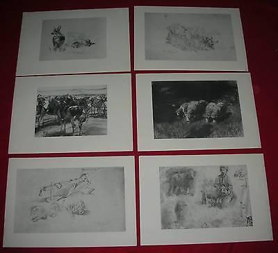 Tierdarstellungen 6 Grafiken 36x25 cm Tiermalerei Scharfe Kühe Ochsen Hirte