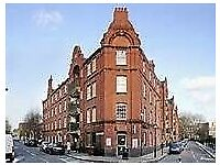 1 Bed Flat in Stepney