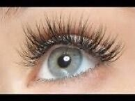 $50 HALF SET LASH EXTENSION EOFY SPECIAL@HAIR AND BEAUTY@LUTWYCHE Lutwyche Brisbane North East Preview