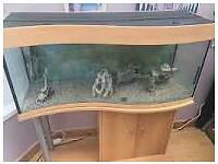 4ft wave front fish tank